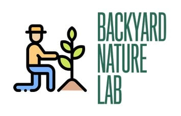 Backyard Nature Lab